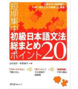 Intensive Course in Elementary Japanese Grammar in 20 Points (Band 1)